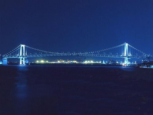夜景がキレイ☆JR浜松町・品川駅よりシャトルバスがあるから便利!ベイビューのお部屋を確約! ビジネスに!観光に!東京 竹芝ステイ!スタンダードプラン ベイビューツイン