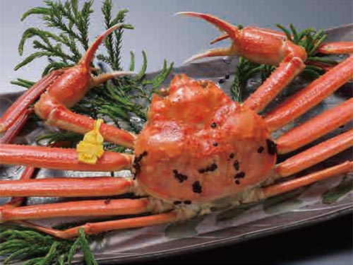 【日本海の恵みと贅が溢れる新鮮美味を巡る旅】越前がにを食す あわら温泉 清風荘 2日間
