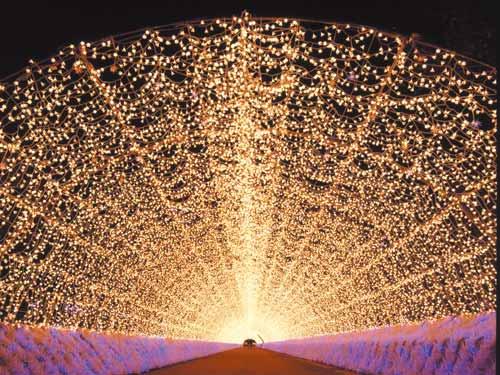 イルミネーション 光のトンネルのイメージ