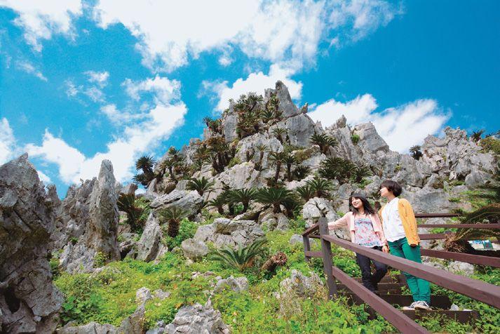 2日目のやんばる国立公園 大石林山(全景) イメージ