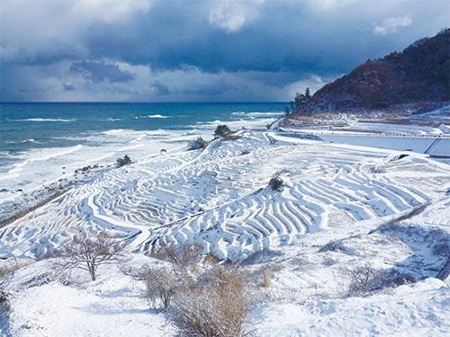 白米千枚田(冬)のイメージ