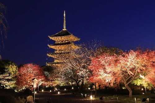 JR新幹線利用 秋の京都を愉しむ特別拝観へ