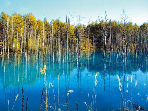 おすすめ観光地 青い池 イメージ