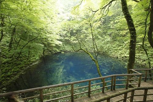 十二湖 青池のイメージ