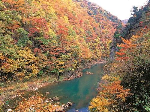 抱返り渓谷のイメージ※天候等により紅葉の見ごろは変わります。
