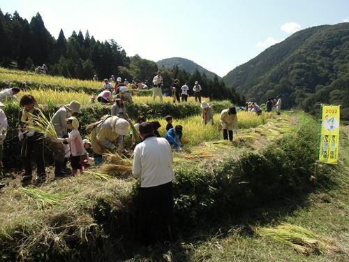貝原棚田のイメージ