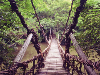 かずら橋(イメージ)