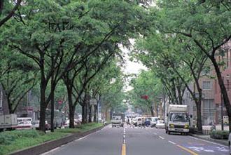 仙台市街地のイメージ