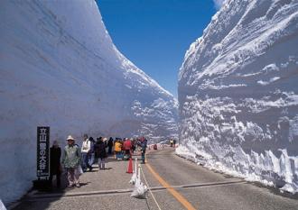 絶景雪の大谷は6月22日まで!