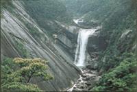 屋久島 滝 イメージ