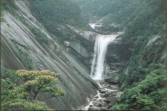 屋久島イメージ 千尋の滝(行程には含まれておりません)