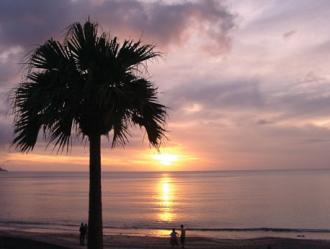 東洋のガラパゴス奄美大島