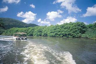 西表・仲間川ジャングルクルーズのイメージ