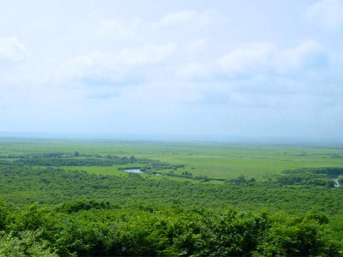 釧路湿原(7月頃)