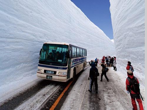 雪の大谷のイメージ ※開催期間…4/15〜6/22予定