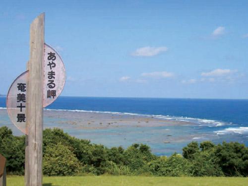 奄美・あやまる岬 ※奄美十景に数えられる人気の景勝地です イメージ