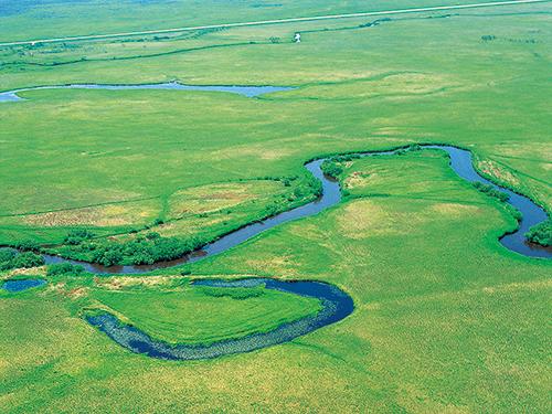 釧路湿原のイメージ