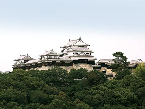 松山城のイメージ ※入場料別途要