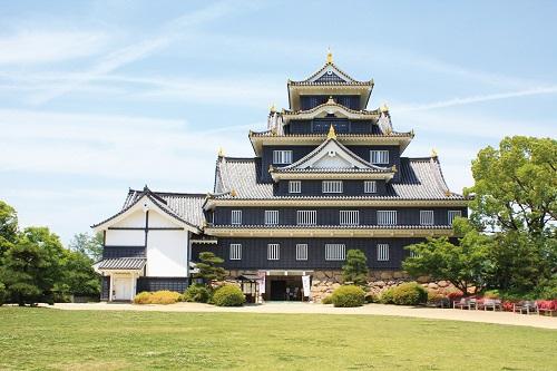 岡山城のイメージ(別途料金)