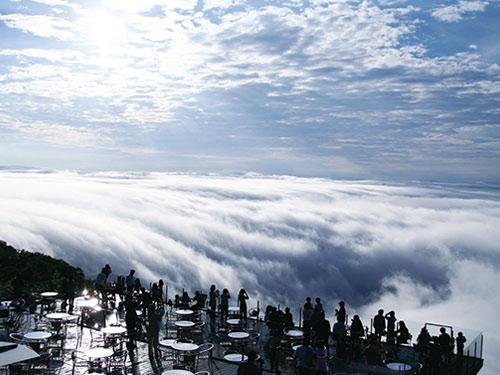 雲海テラスと大自然!アクティビティ利用券付 星野リゾート トマム&札幌3日間