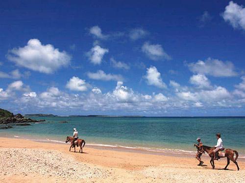 イーフビーチ乗馬体験 イメージ