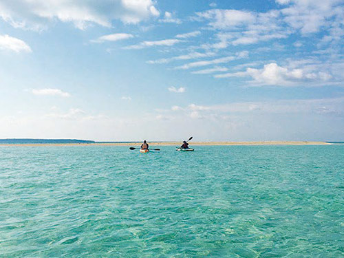 砂の浜「ユニ」上陸ツアー イメージ