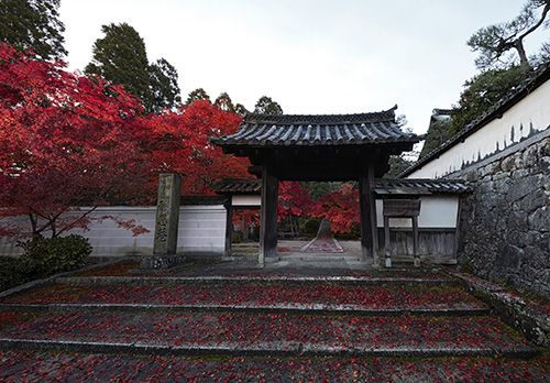 酬恩庵一休寺のイメージ(2018秋JR東海「そうだ 京都、行こう。」キャンペーン寺院)※拝観は夜となります