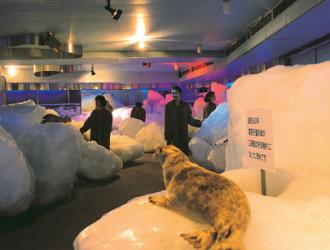 オホーツク流氷館※ひがし北海道周遊バス「サウスルート」で訪れます