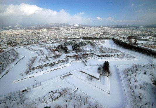 五稜郭タワー(展望台入場券付)からの眺め(冬) 函館市内からタクシーチケットで♪
