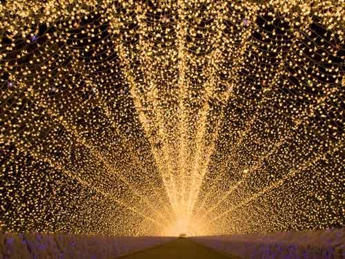 幻想的な光に包まれる国内最大級のイルミネーション