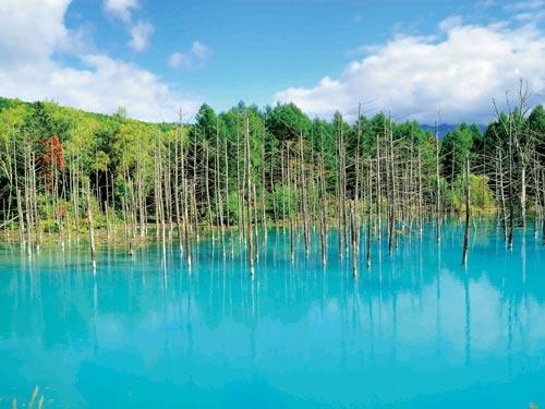 青い池のイメージ ※見る角度によって表情が異なります。