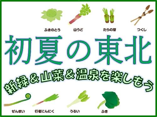 新緑&山菜&温泉を楽しもう<福島県> 東山温泉で初夏を満喫! 本館・シャワー付和室【夕朝食付】