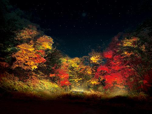 層雲峡温泉 紅葉谷のイメージ(写真提供:層雲峡観光協会)
