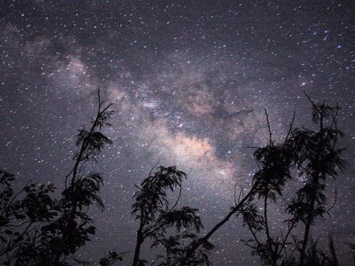 アンビエント星空ナイトツアーのイメージ