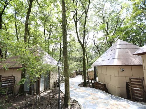 閑静な森の中に点在する戸建て風宿泊棟 にっぽん全国 夕食バイキングの宿 ふくろうの森