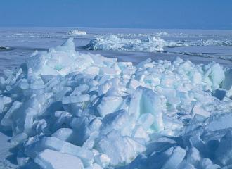 ツアー 流氷