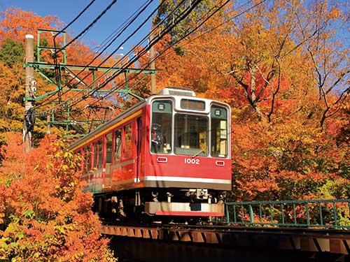 箱根登山鉄道(11月頃)のイメージ